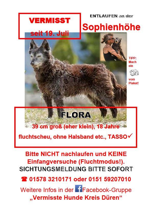 Flora wird vermisst